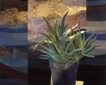 Aloe  116.5×116.5cm 紙本着彩 箔